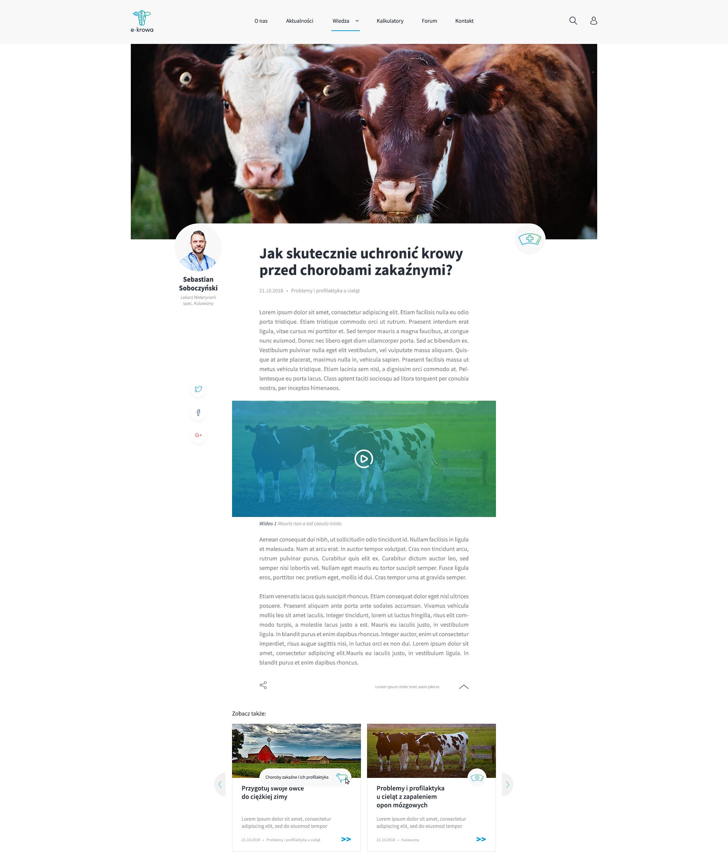 e_krowa_artykuł_design